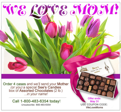 E-blast ad/coupon/offer for website & monthly newsletter